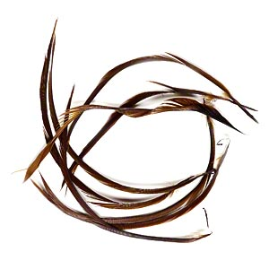feather, goose (dyed), brown, 4 x 1/8 to 6-1/2 x 1/8 inch biot. sold per 0.13-ounce pkg, approximately 5 feathers.