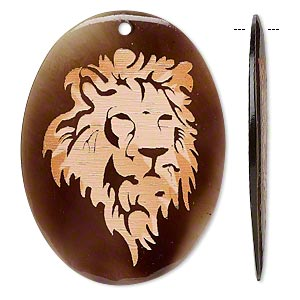 focal, transparent noble pen shell (coated), multicolored, 39x29mm-50x41mm single-sided flat oval with etched lion head design. sold individually.